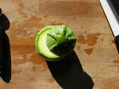 taglio zucchina tonda