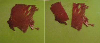 involtini di tonno con pistacchi