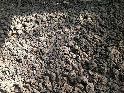 orto terreno rastrellato