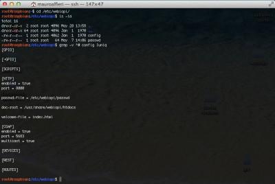 webiopi raspberry config e password