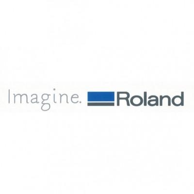 Roland DG logo