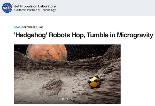 Hedgehog robot