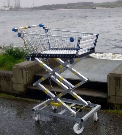 robotic shopping trolley