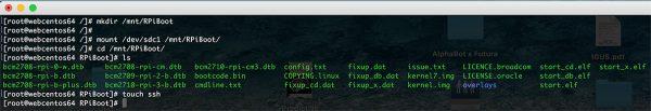 Rpi Zero W Wifi list boot mountpoint