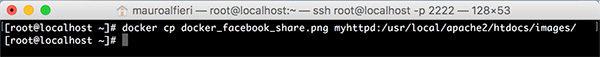 Docker Edit container docker cp image