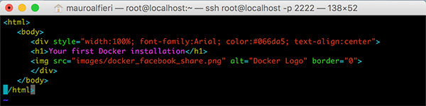 Docker Edit container html vi page