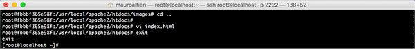 Docker Edit container index html