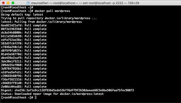 Wordpress MySql Docker containers get wordpress