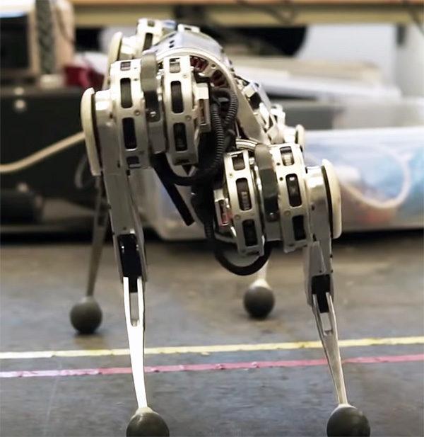 robot quadrupede mini ghepardo struttura