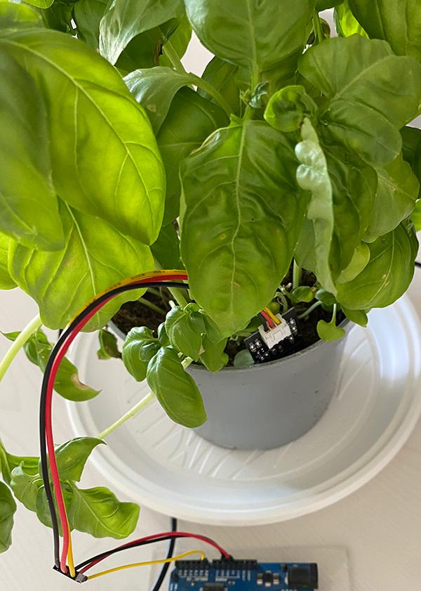 capacitive soil moisture sensor arduino connection sensor